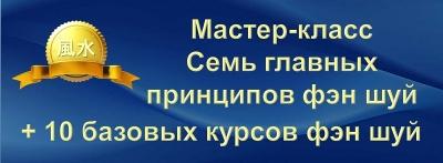 25. Мастер-класс «Семь главных принципов Фэн Шуй» + 10 курсов